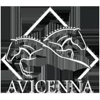 لوگوی مرکز تولید و پرورش اسب اویسینا